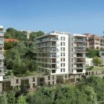 immobilier saone